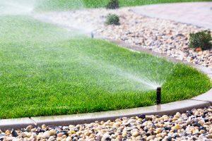 Las Vegas Irrigation Design